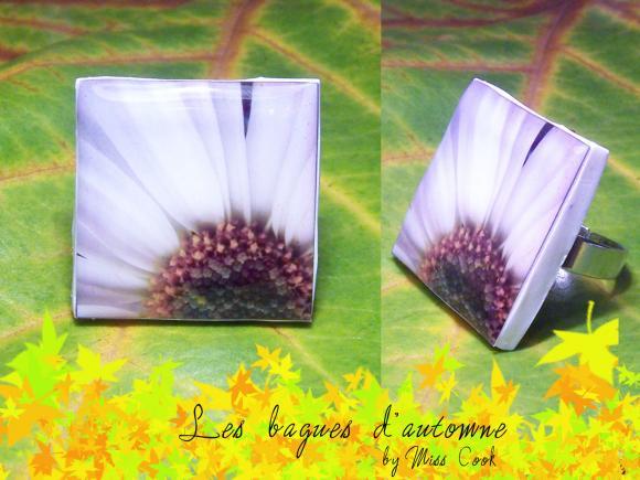 http://miss.cook.cowblog.fr/images/baguedautomne3.jpg